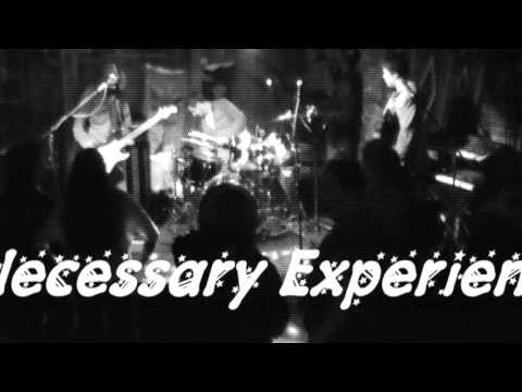 Necessary Experience - Dead or Alive