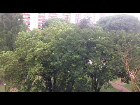 Parque Posadas . Aires Puros. Montevideo
