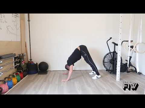 Pike Up with Pike Hand Stand Push Up