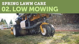 Low Mowing in Spring For a Healthy Lawn