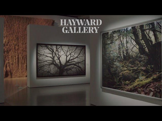 A Virtual Tour of the Hayward Gallery
