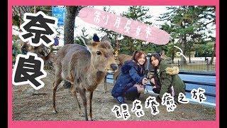 【vlog】激情制服妹的奈良餵鹿之旅|NaHami