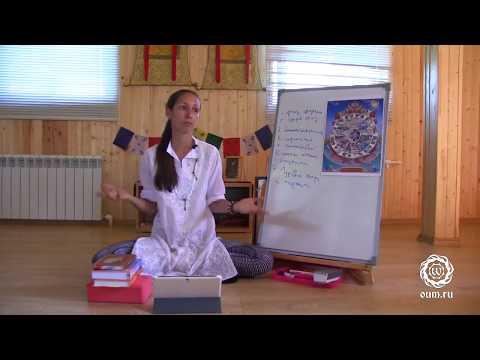 Monoterapija hipertenzijai gydyti