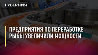Предприятия по переработке рыбы увеличили мощности. Новости. 13/09/2021