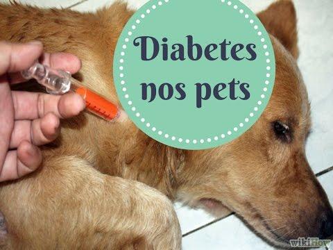 Tipo de deficiência 2 diabetes insulinopotrebny