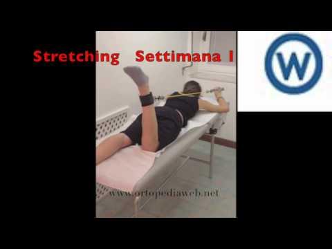 Esercita con un bastone alla spalla artrosi congiunta