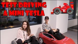 Test Driving a Mini Tesla 🏎 (WK 348.2)   Bratayley
