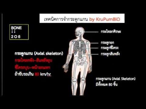 ปรสิตในร่างกายมนุษย์ยา