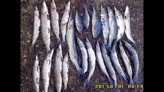 Все о рыбалке мурманск озеро