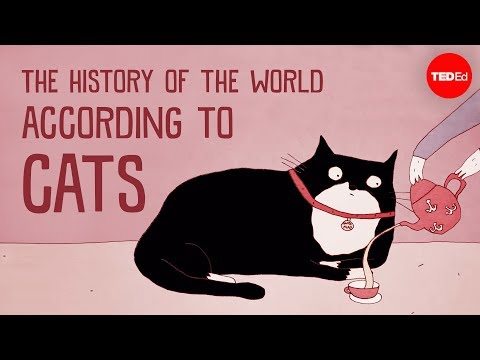 The History of the World - According to Cats.