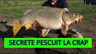 Secrete pescuit la CRAP (problemă cu racii).