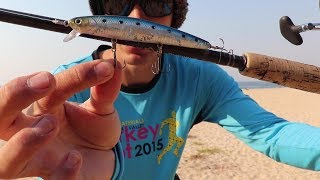 Воблер lucky craft flash minnow 110-253 citrus shad