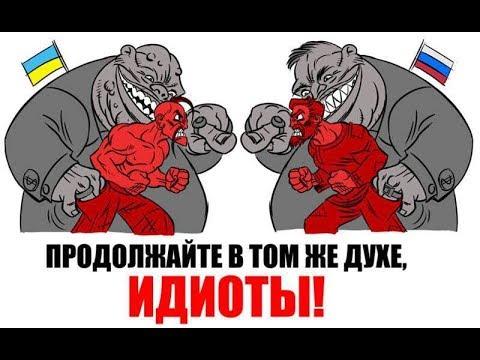 Нет вражды между братьями