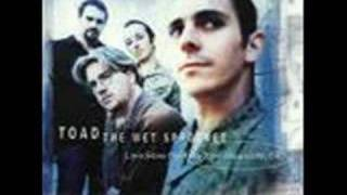 Toad The Wet Sprocket - One Little Girl