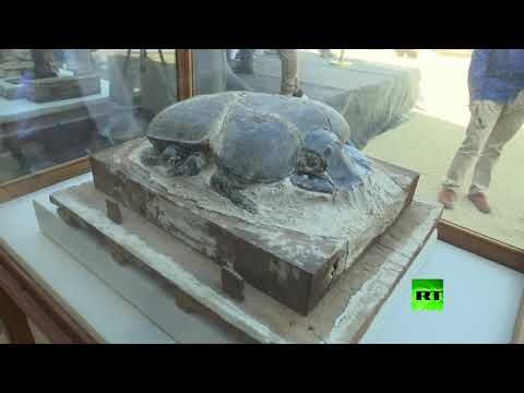 العرب اليوم - شاهد: مصر تعلن اكتشاف حيوانات محنطة