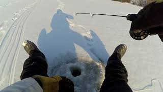 Рыбалка в новокузнецка
