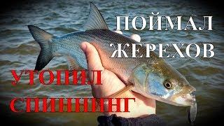 ЖЕСТЬ! УТОПИЛ СПИННИНГ! А потом наловил жерехов - Рыбалка со stigan