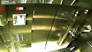 Хозяин забыл собаку на поводке по другую сторону лифта