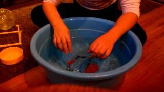 Как мыть хомяка ?