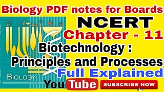 biotechnology principles and processes class 12 crash course