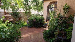 Frontyard Urban Edible Garden Tour / Food Forest  Containers Gardening