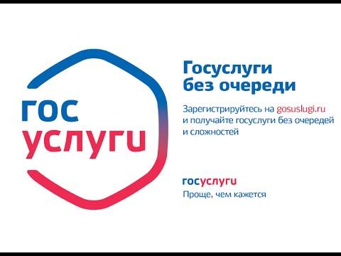 Регистрация юридических лиц на портале госуслуг (субтитры)