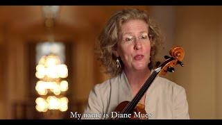 CSO viola Diane Mues on her Civic experience