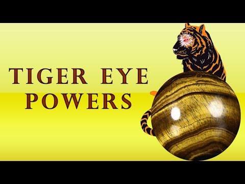 Tigers Eye Stone - Wholesaler & Wholesale Dealers in India