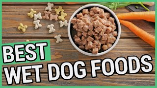 Best Canned Dog Food | 5 Best Wet Dog Foods 2020 🐶 ✅