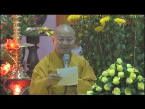 Vấn đáp: Niệm Phật hồi hướng, giúp người thân đi chùa, hiến xác (16/02/2014) - Thích Nhật Từ