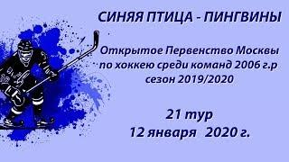 Синяя птица - Пингвины, ОПМ по хоккею 2006 г.р. сезон 2019/2020 12.01.2020