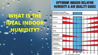 What Is the Ideal Indoor Humidity?