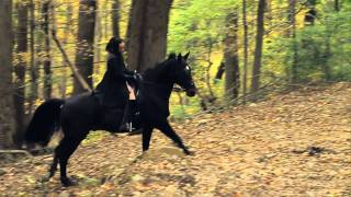 """Video thumbnail of """"Austra - Spellwork (Official Video)"""""""