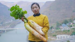 大山里种的水果萝卜,个头都特别大 特别甜,你们说怎样做才好吃呢?Chinese Food | Food made with radishes | 野小妹wild girl
