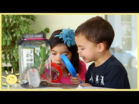 PLAY | 3 Easy Bug Habitats