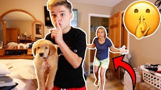 HIDING MY NEW PUPPY FROM MY MOM FOR 24 HOURS!