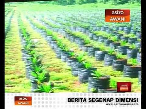Najib umum tabung amanah peserta Felcra