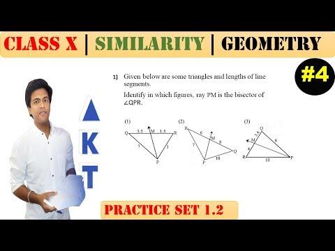 Similarity [Part 4] | Class 10 | Practice set 1.2 (MATHS 2) | Mah. (SSC) Board | Q1