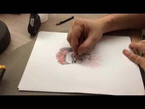 Vidéo de Benjamin Lacombe