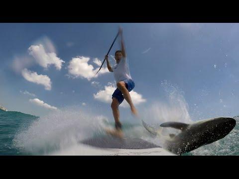 Paddle Boarder Gets Unexpected Spinner Shark Encounter off Jupiter Florida