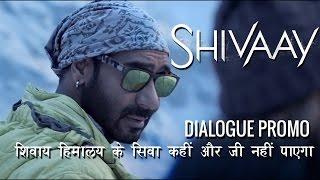 शिवाय हिमालय के शिव कहीं और जी नहीं पायेगा । शिवाय डायलाग