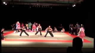 preview picture of video 'La Nuit Des Arts Martiaux 07 Mai 2011 Guyancourt Partie 1'