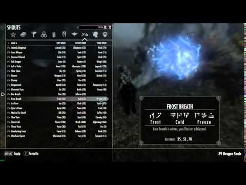 New Players : You must install the Unofficial Skyrim Patches