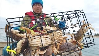 Live look at lobster trap in action - hlub.video