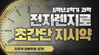 전자렌지로 1분이면 만드는 천연지시약!(feat.컵라면 용기)