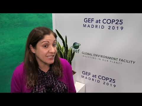 COP25: Amal-Lee Amin, the Inter-American Development Bank