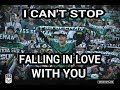 Brigata Curva Sud  - I Can't Stop Falling in Love With You