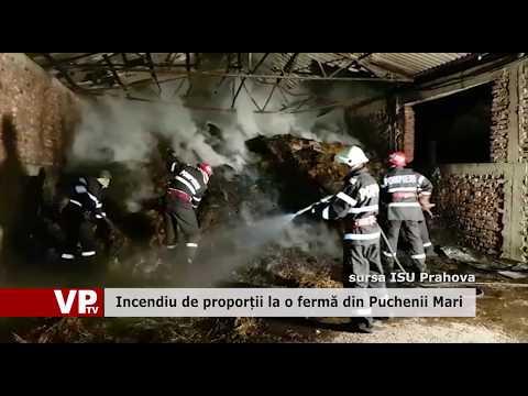 Incendiu de proporții la o fermă din Puchenii Mari