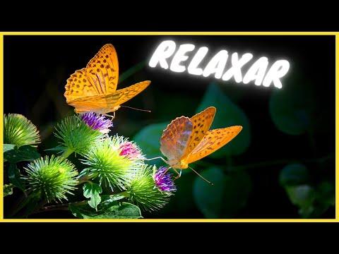 Msica para dormir - Sons da Natureza - Meditao - Relaxamento - Meditation sound - sv136
