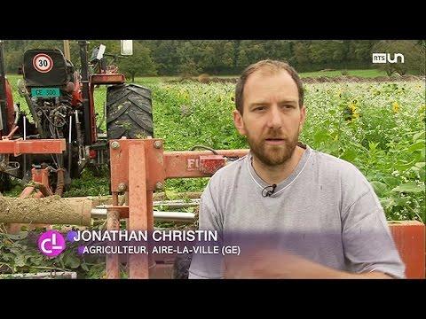 """Cette méthode dite """"agriculture de conservation"""" est plus écologique et moins agressive pour le sol. A Genève, ils sont aujourd'hui 17 agriculteurs à avoir délaissé la charrue pour cette méthode de préservation qui ne fait pas encore l'unanimité dans le canton.  Source: RTS - Radio Télévision Suisse"""